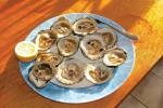 Plate of raw oysters, fresh from Clew Bay in Co. Mayo, are ready to eat.